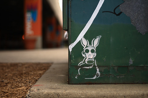 Rabbit Graffiti 1473