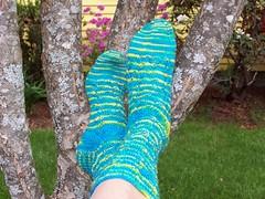 Skinny Dipping socks
