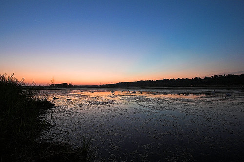 Marsh After sunset