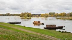 La Loire (christian.grelard) Tags: loire loirevalley bateau boat river fleuve water landscape