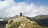 Spain Ibex Hunt & Driven Partridge Hunts 67