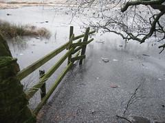 frozen lake (abz96) Tags: fence frost frozenlake