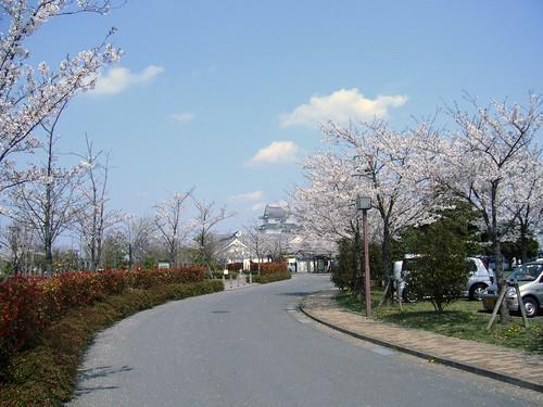 春の関宿城