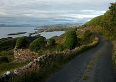 The High road (Dave Dillon) Tags: ireland sea irish cottage eire kerry fuschia famine cokerry ardgroom southwestireland