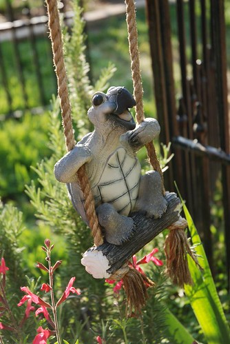 Swinging Turtle