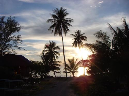 In the tropics...