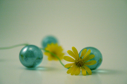 1st light tent photo: flowers and marbles