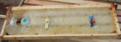 Beekeeping 2287