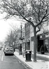 South side of Lakeshore_ (Bill Smith1) Tags: believeinfilm billsmithsphotography hc110b halton heyfsc nikkorlenses nikonn90s oakville rolleirpx400