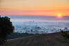 Lavaur au levant (geraniumjoecose) Tags: canon eos5d ef100400mmf4556lisiiusm tarn brume matinale vache payasage nature landscape brouilllard levédesoleil soleil