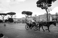 chariots (chris.duesing) Tags: italy rome carriage horse tourists