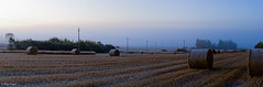 Harvest (laku) Tags: autumn fall canon eos 40d