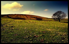 (andrewlee1967) Tags: yorkshire andrewlee1967 uk anawesomeshot bravo lowangle andylee1967 canon400d england landscape focusman5 andrewlee