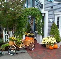 pumpkin bicycle