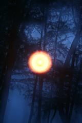 cahaya dikala senja