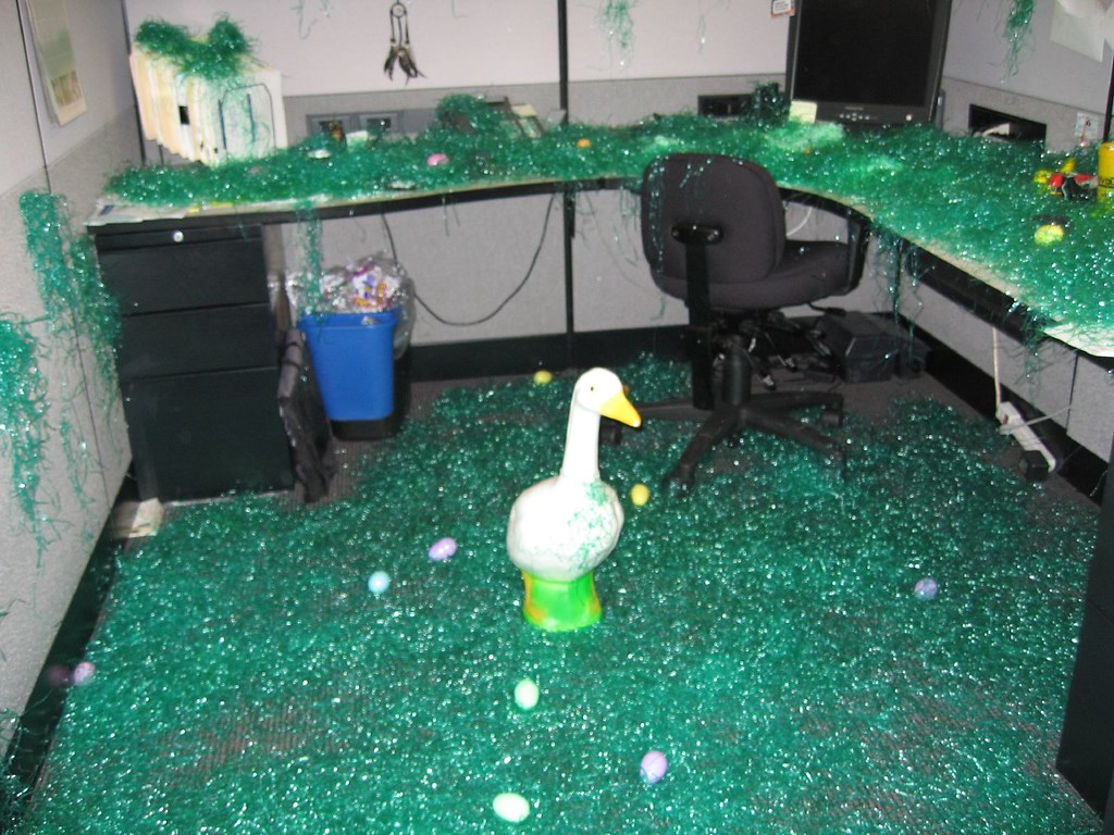 The World S Most Recently Posted Photos Of Duck And Prank