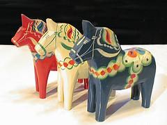 Dara horse