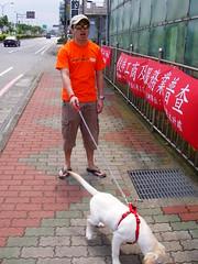 盲人與導盲犬