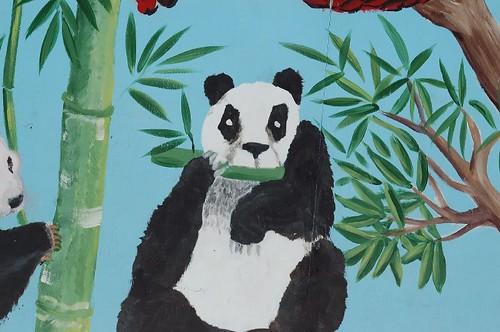 zoo june '070208