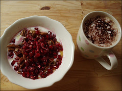 Greek Yogurt with Honey, Cinnamon, Peacans and Pomegranate (Yes Becky) Tags: home coffee breakfast 2007 applesforjam