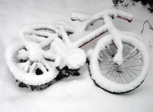 A kid's bike