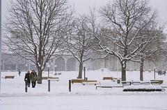 Schlossplatz (tessponte) Tags: neve inverno estugarda