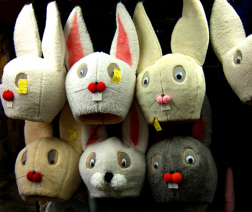 Like So Many Rabbit Heads  - JeffCam