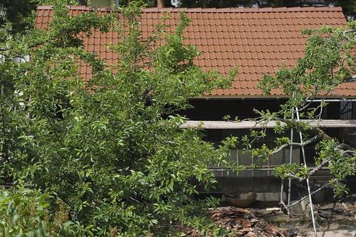Gartenhausdachdecken