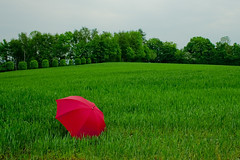 red umbrella (myfear) Tags: trees sky green umbrella explore gras abigfave artlibre colorphotoaward goldenphotographer diamondclassphotographer flickrdiamond highestposition41onfridayjune12007