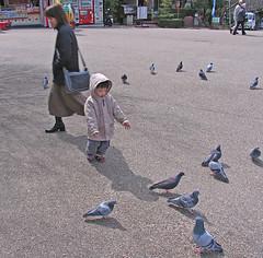 Muryama-Koan Park 03-13-06 (gseloff) Tags: japan kyoto cotcbestof2006 gseloff