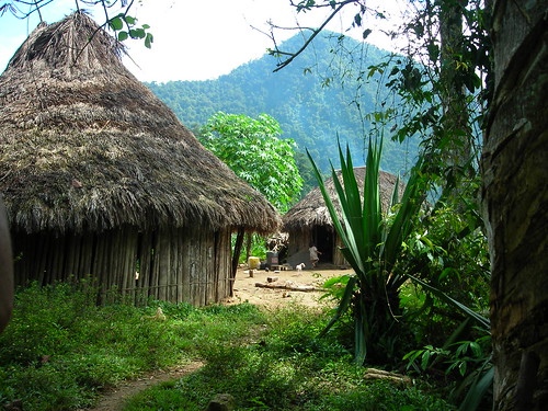 The houses of the Tayrona people por Emily Cunnane.