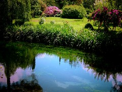 Ninfa's Garden (Claudio T) Tags: italy flower nature garden italia naturesfinest favoritegarden superhearts