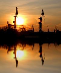 Hamburg Docks Reflected (davidharding) Tags: deleteme5 sunset deleteme8 deleteme reflection deleteme2 deleteme3 deleteme4 deleteme6 deleteme9 deleteme7 docks saveme saveme2 saveme3 deleteme10 hamburg cranes continuum cmcolors