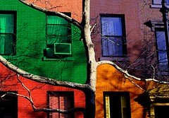 Tell Me Again How We Met (Linus Gelber) Tags: nyc windows newyork colors brooklyn catchycolors topv555 topv1111 topv999 sixwordstory cobblehill topv777 sws clintonstreet brownstones gsubby122109