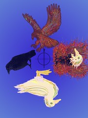 4 of Birds
