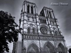 Notre Dame (m@®©ãǿ►ðȅtǭǹȁðǿr◄©) Tags: paris notredame france arquitectura catedral monocromo bw blancoynegro cielo atardecer fachada estructura edifício cristales olympusepl1 zuikoed14÷42mmf35÷56 marcovianna marcoviannafotógrafo m®©ãǿ►ðȅtǭǹȁðǿr◄©