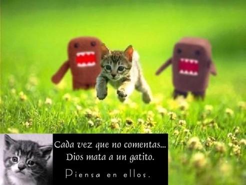 piensa en los gatitos...