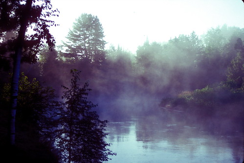 Morning on Mead Creek