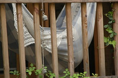 I Know Great Places To Hide The Bodies (NCWench) Tags: hammock porch bodyparts tccomp022