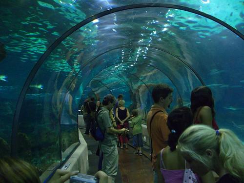El Aquàrium de Barcelona