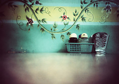 salt & pepper (Stitch) Tags: topf25 kitchen topv111 wall katrina interestingness lomo lca xpro topv333 bravo philippines 500v50f crossprocessing kra05 expired vignette saltpepper fujivelvia50 topv1000 2005favfilm