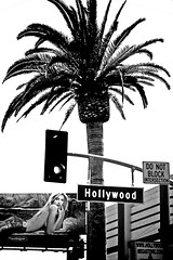 Hollywood Blvd. - by Shavar Ross