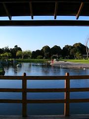 Parque japons (Mauricio Morata A.) Tags: chile deleteme5 deleteme deleteme2 deleteme3 deleteme4 deleteme6 deleteme7 laserena sansonesmicoanimador