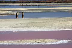 pond 8A again (lawatt) Tags: southbay alviso saltponds salt