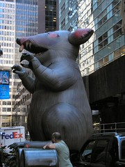 Inflatable (David Reeves) Tags: new york city newyorkcity morning newyork animal monster scary rat manhattan attack inflatable commute nightmare creature