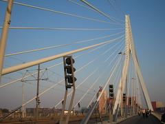 Erasmusbrug, Rotterdam (sosarorahoh) Tags: holland rotterdam erasmusbrug
