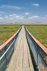 Boardwalk 2 (Digital Trav) Tags: california sky mountains ahead clouds landscape interestingness1 explore paloalto sanfranciscobay baylands cotcmostinteresting 74points 100p bydigitaltrav digitaltravmyfave digitaltravyourfave dt5fv dt10fv dtexplore