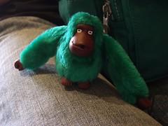My Kipling Gorilla