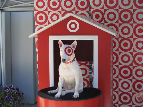 target dog spot. Target dog at Yahoo!