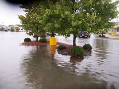 Wal*Mart Parking Lot (General Wesc) Tags: flood uploadedbyluca washingtonnc